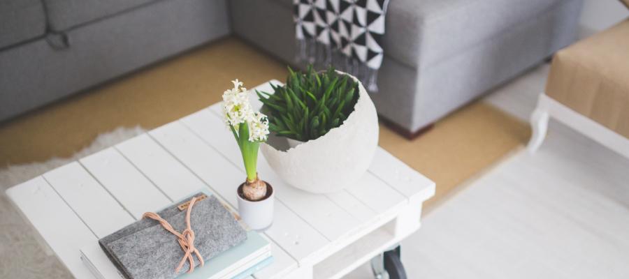 Helpful home rental tips